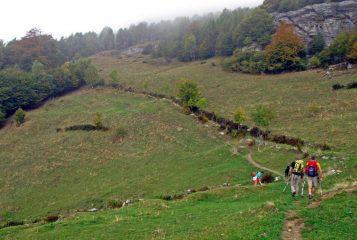 L'incrocio tra la strada e il sentiero subito dopo l'alpe Freste
