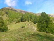 alpe Casera di sopra e versante ovest della cima delle Croci (sulla verticale sopra le baite) sul versante di Riva Valdobbia