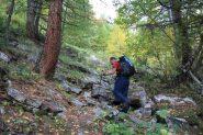 salendo nel bosco iniziale del Vallon des Houerts...02 (7-10-2012)
