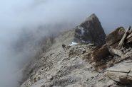 la facile cresta finale di rocce rotte, dove sale la traccia di sentiero (7-10-2012)