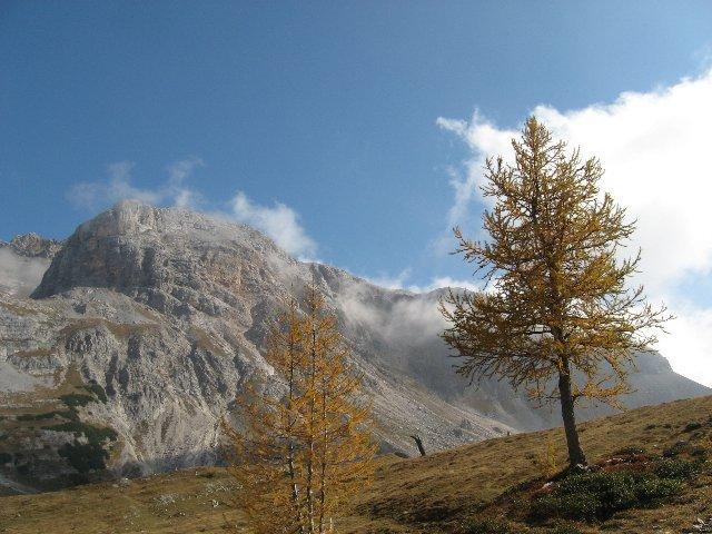 alta Val Flavona