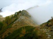 La Loccia dalle creste verso il Monte Alom