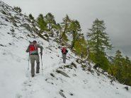 oltre il bosco, traccia nella prima neve