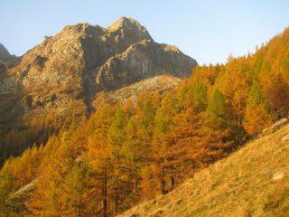 Monte Colombino visto dall'Alpe Prà Riund