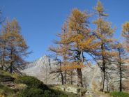 Colori d'autunno e Torre Lavina