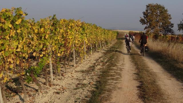 Crea (Santuario di) anello da Pontestura per il monte Sion 2012-10-23