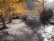 colorisul fiume