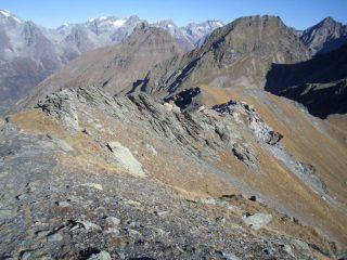 in discesa sulla cresta verso il Colle...