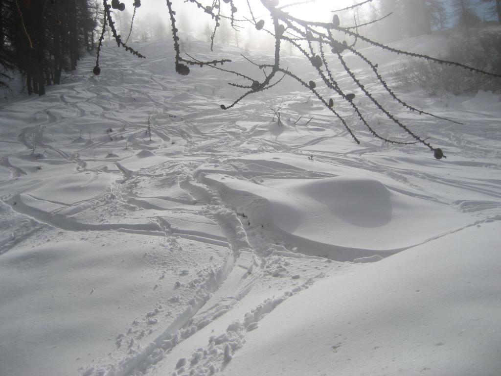 Parte centrale con tanta neve