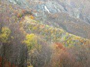 linea da tenere per arrivare al sentiero sopra l'alpe