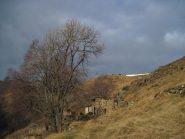 L'Alpe Lunella