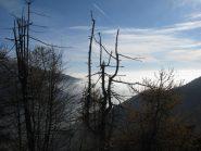 Mare di nebbia sulla pianura