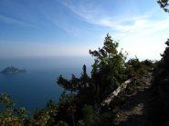 L'isola Gallinara sembra solcare il mare di fianco a noi
