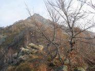 Salendo la cresta verso l'Arbella