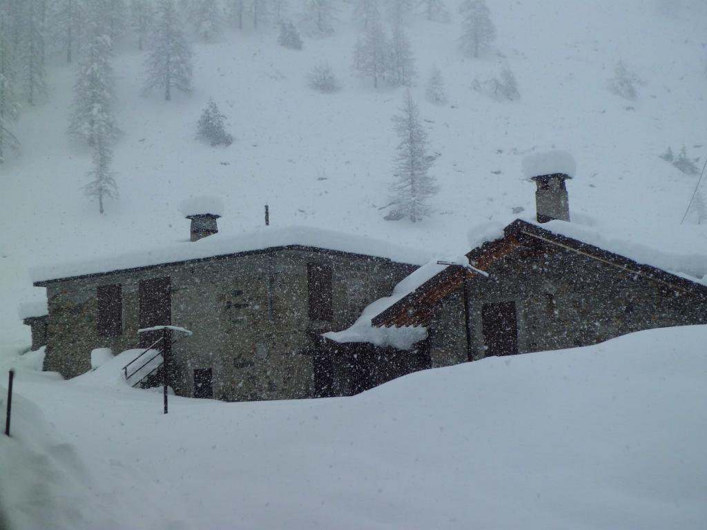 Intanto continua a nevicare ...