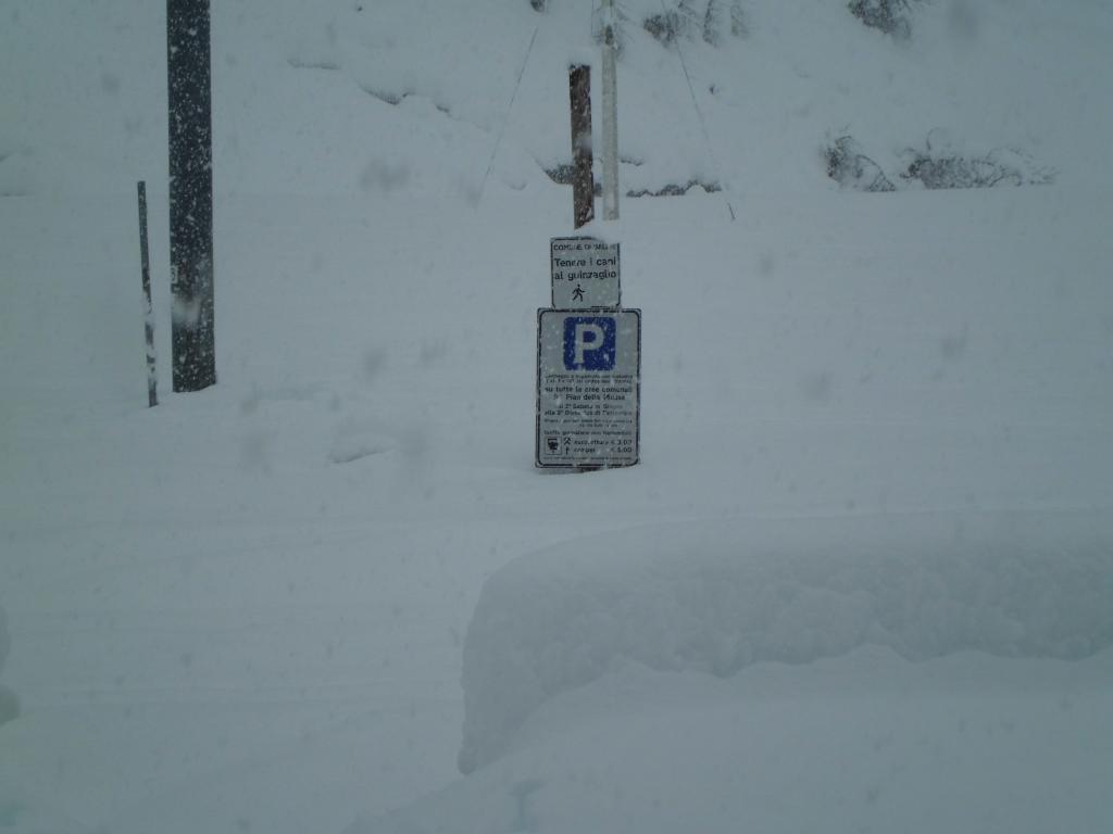 Neve al cartello