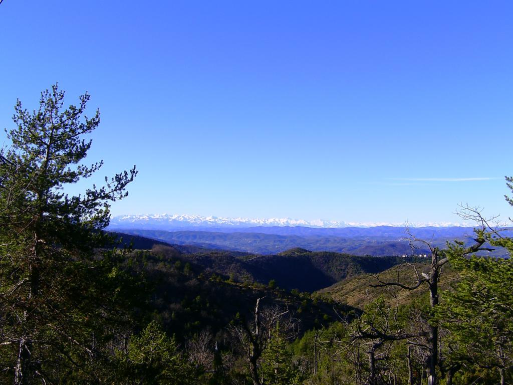 Gorrei (Bric dei) da Piancastagna, anello 2012-12-03