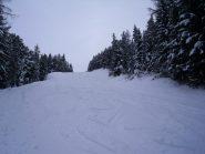 la parte intermedia sulla pista non lavorata ,con bella neve  fresca ed asciutta...
