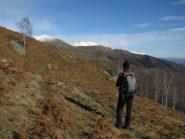 Verso l'Alpe Eredi Curti