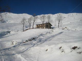 Bell'alpeggio