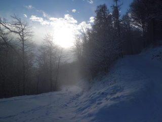 Giochi di luce e nebbia dopo la nevicata