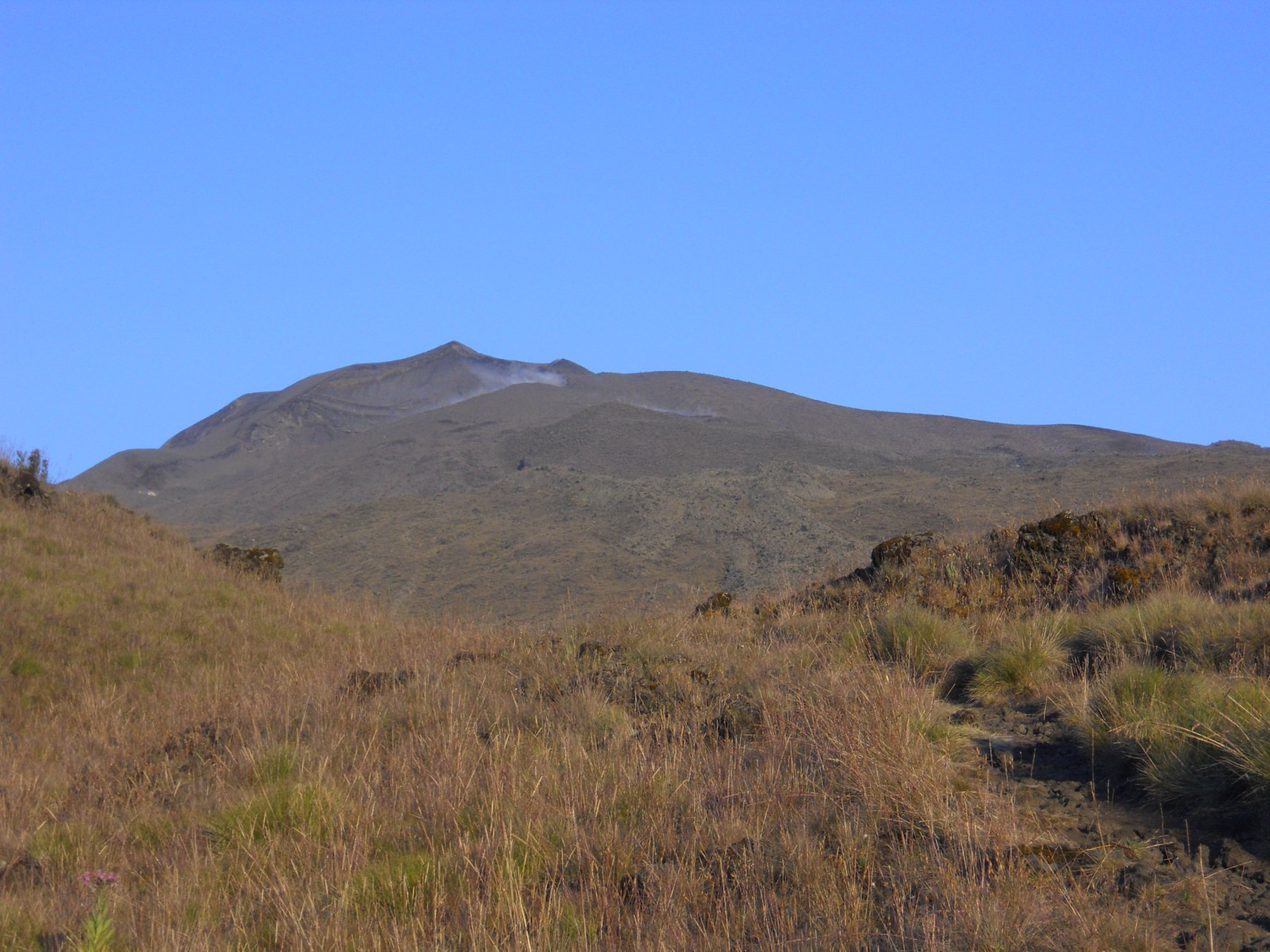 Camerun (Monte) Guinness route 2012-12-28