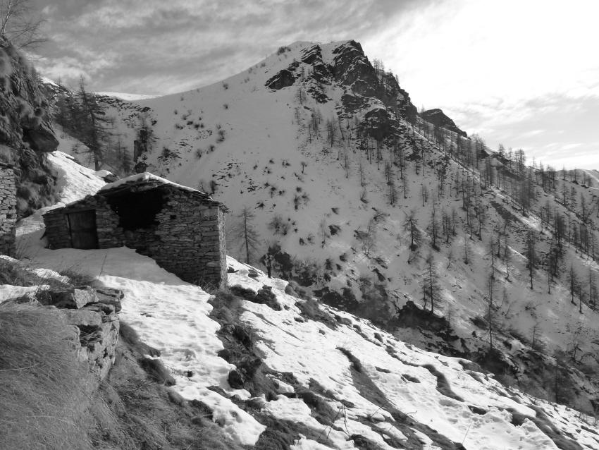 Cima Busiera dall'alpe Almini