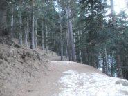 una parte della stradina senza neve