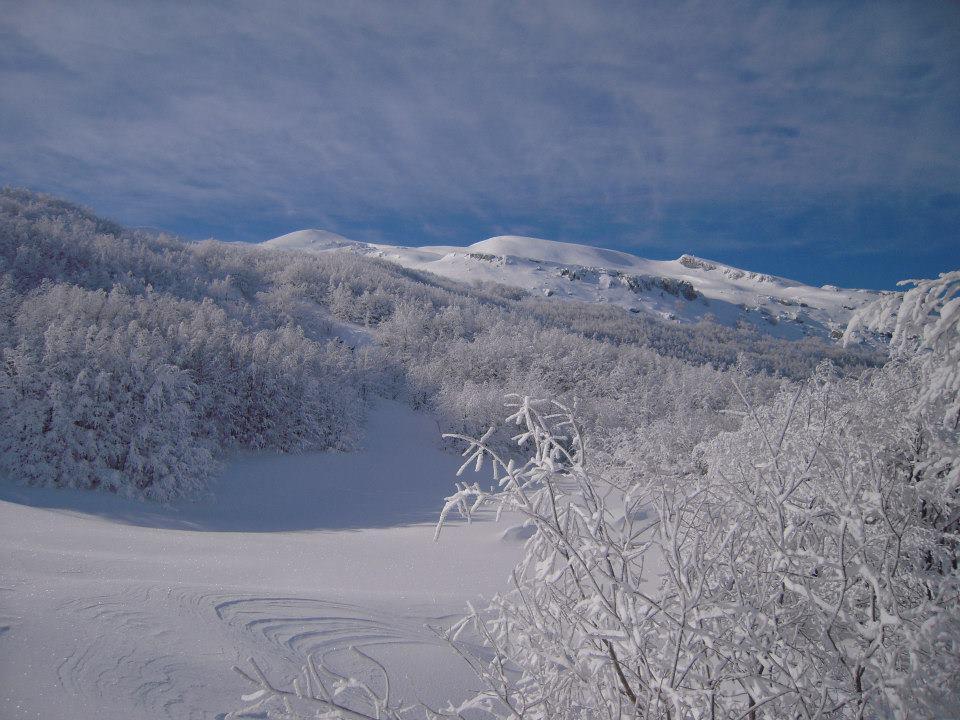 Losanna (Monte) da Prato Spilla 2013-01-18