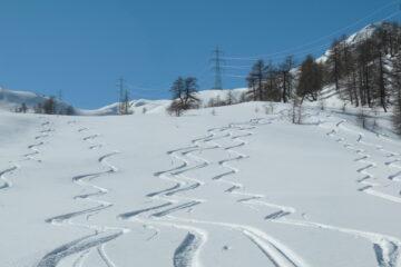 Neve polverosa in discesa   I   La belle poudreuse dans la descente   I   Shredding snow on the way down   I   Pulverschnee in der Abfahrt   I   Nieve polvo en bajada