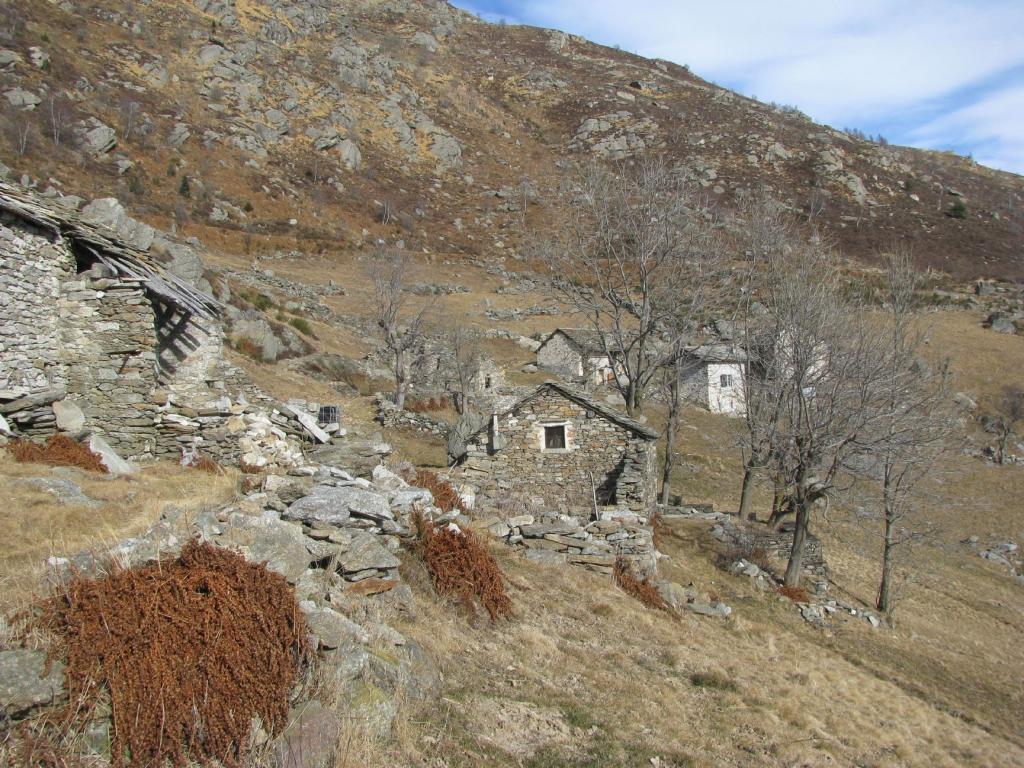 Alpe Trucco