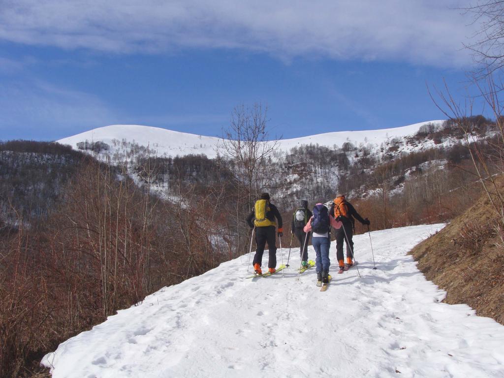 in vista della lunga dorsale dell'alpe rittana