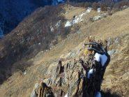 alpe Saudi dalla cresta