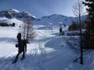 Alle bergerie Balais