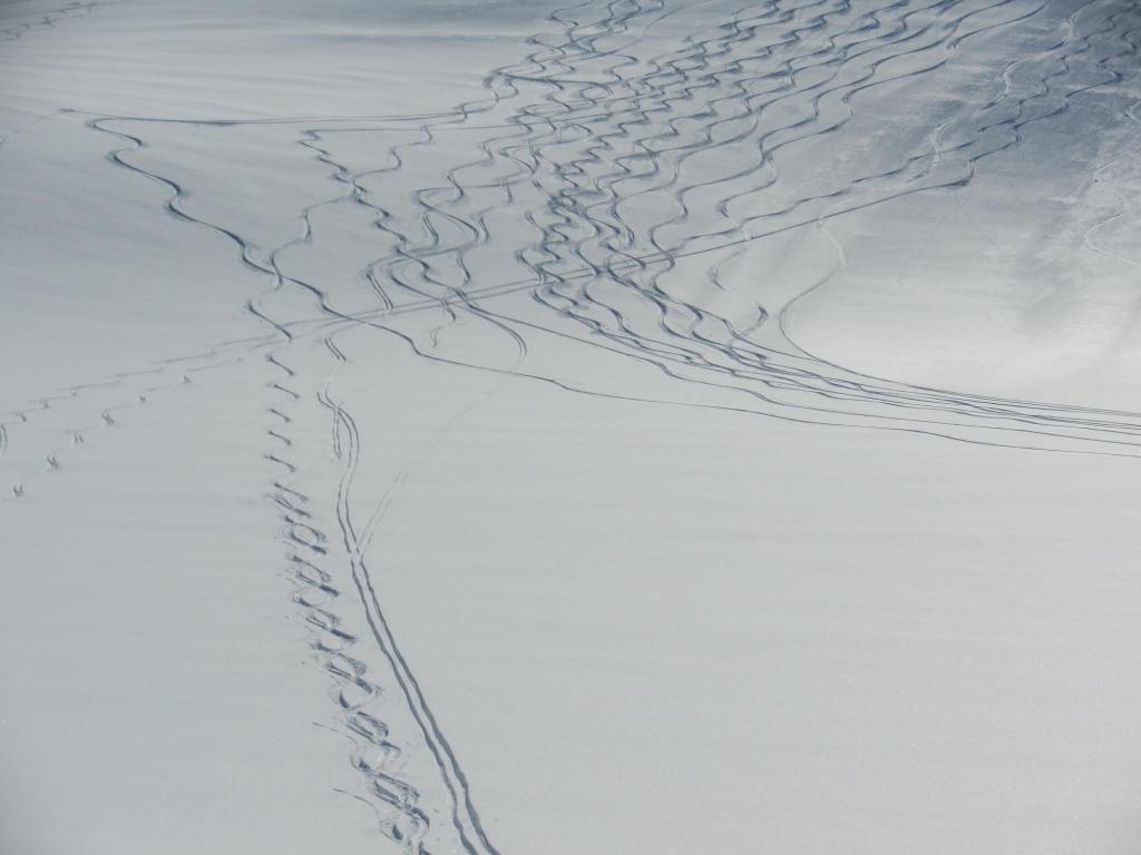 intrecci di tracce scendendo al lago dei Sabbioni