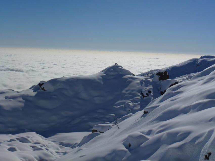 panna montata e mare di nebbia
