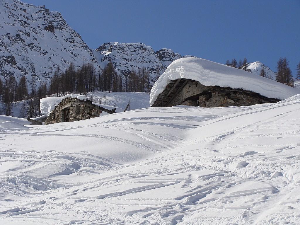 zona alpeggi