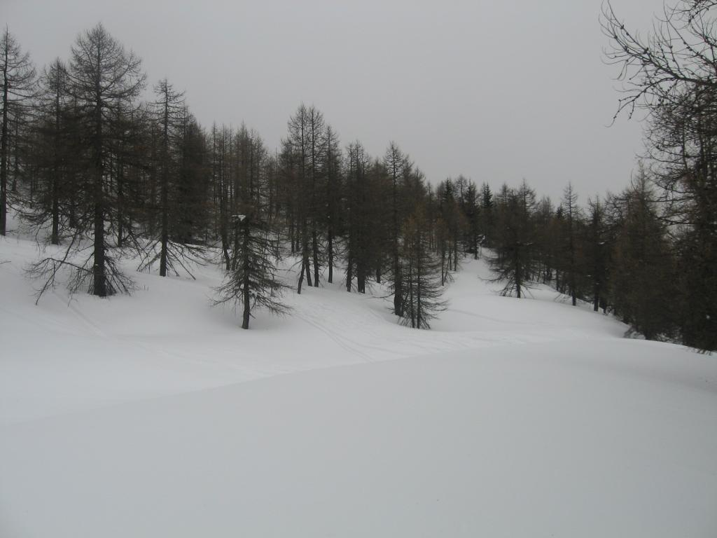 salendo...tanta neve