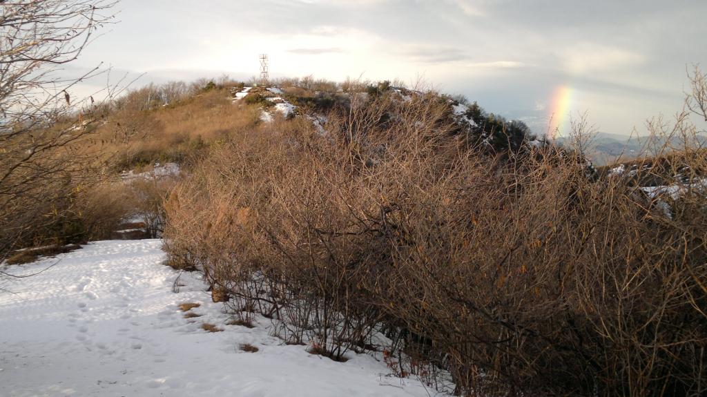 Corvi (Rocca dei) Corona dei monti di Vado 2013-03-09