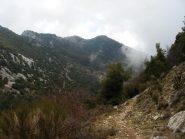 sullo sfondo Longoira e Roc d'Ormea