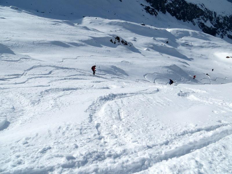 Gran discesa in neve polverosa