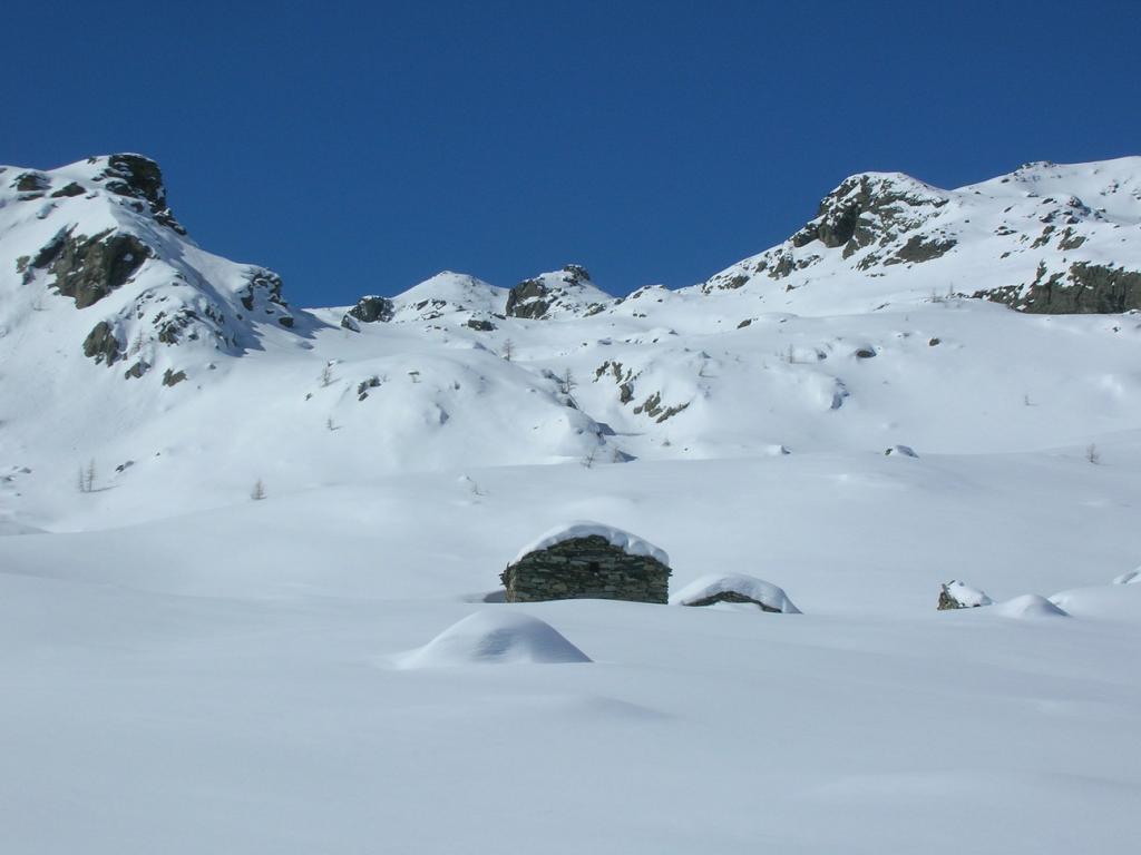 le Alpi al Pian Rachet