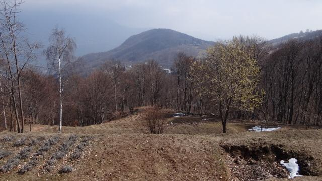 monte CAlmia visto da Musrai