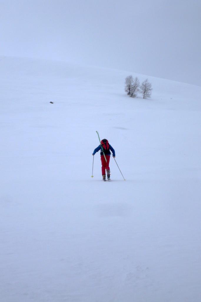 Gigi02 in salita con lo sci recuperato