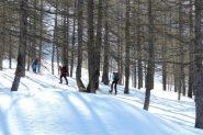 salendo nel bosco sopra Indiritti (13-4-2013)