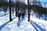 prosegue la salita nella parte alta del bosco (13-4-2013)