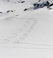 qualità della neve
