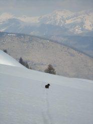 Amos ha visto una marmotta dall'altra parte del vallone....