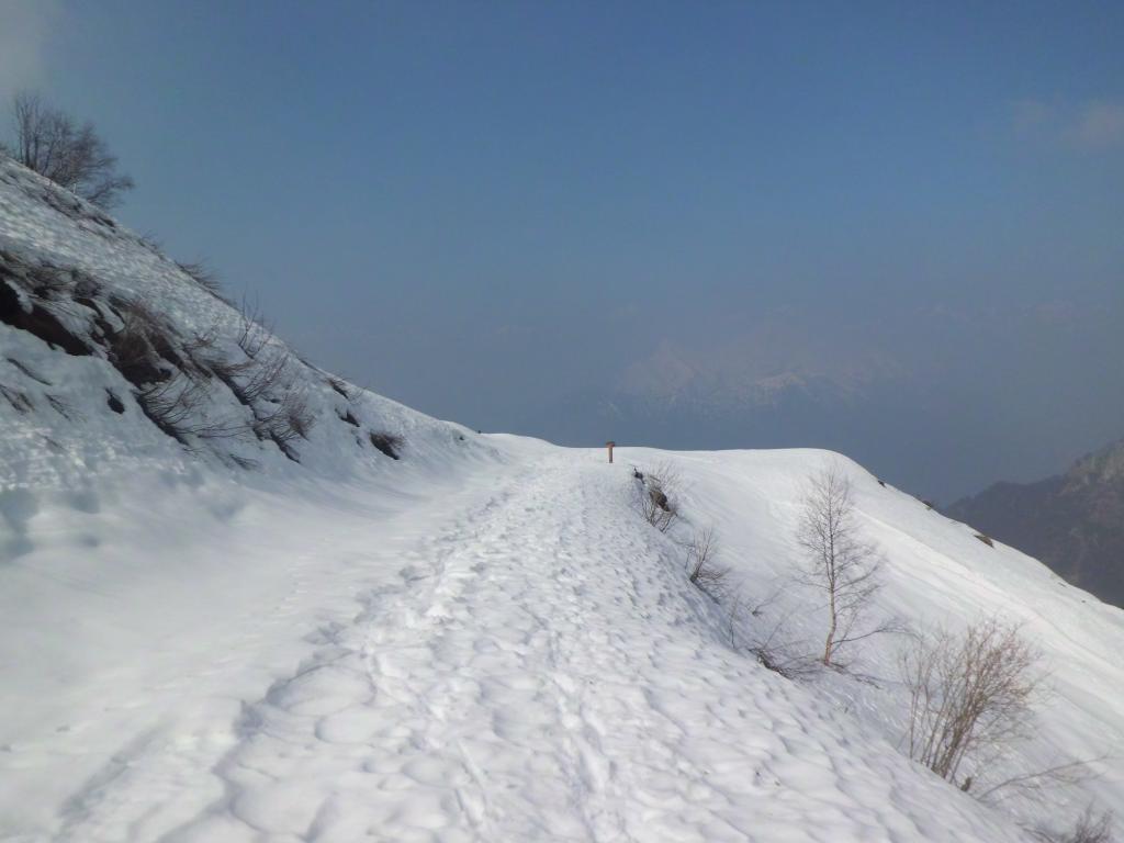 Nei pressi dell'alpe Zanai