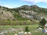 Il boschetto di discesa anticipata e dietro il Poggio Grande col Forte dei Due Fratelli
